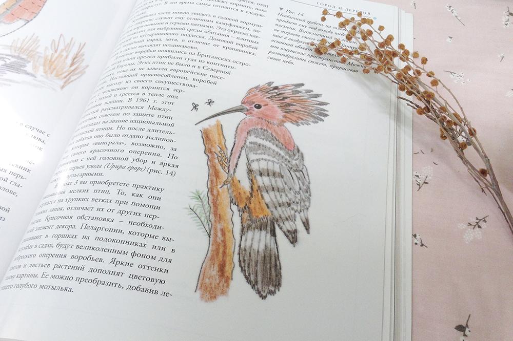 птицы хелен м. стивенс