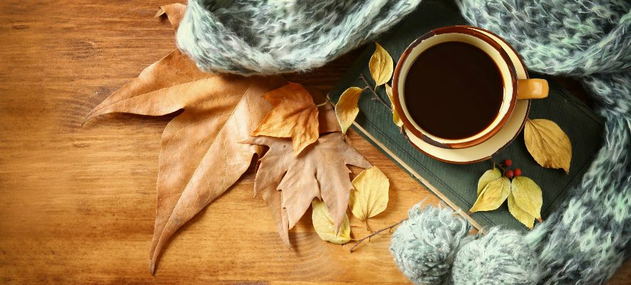 Обзор новинок от М.П.Студия: ботаника, осенние мотивы и подготовка к зиме